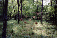 """Spider Web,"" 2003, mixed media, 7' x 15.5'."